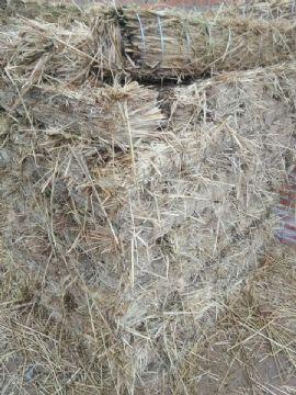 点击查看雷竞技官网平台<br>标题:铁路专用草支垫设备、草棒15854621686 阅读次数:731